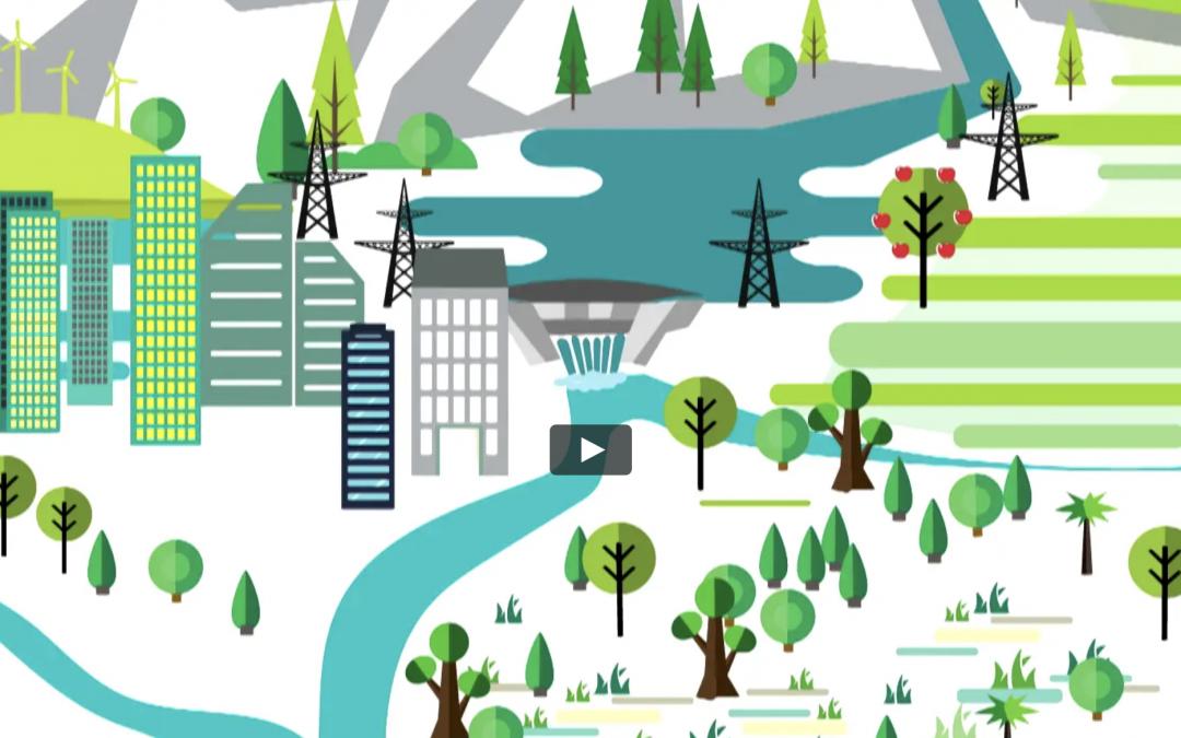 Global Programme Water – Strategic Framework 2017 – 2020